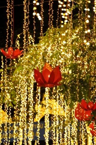 bien led, bien quang cao ,trang tri Noel